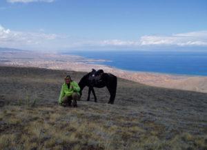 Kirgisistan Das Perd Issykul See